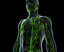 NeuroKinesiologia